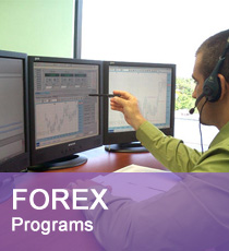 forex training program